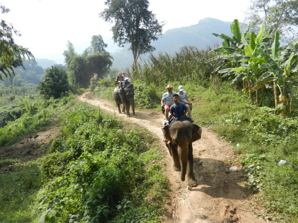 Экскурсия на реку Квай. Катание на слонах