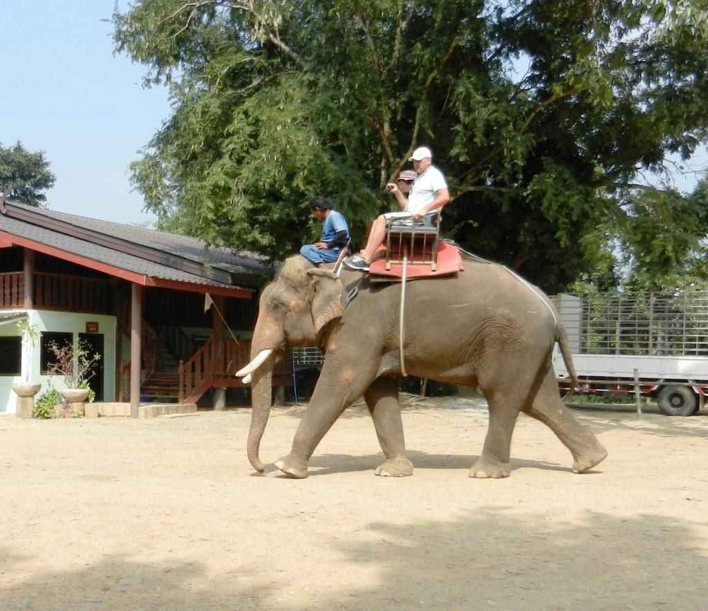Поездка в Таиланд. Вот так туристов катают на слоне